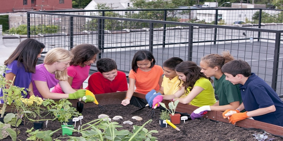 Combining Nature with Nurture at Genesis Elementary | Laval Families Magazine | Laval's Family Life Magazine