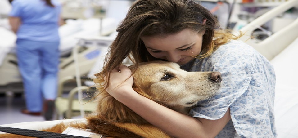 Pets and Teens: Together for Mental Health  | Laval Families Magazine | Laval's Family Life Magazine