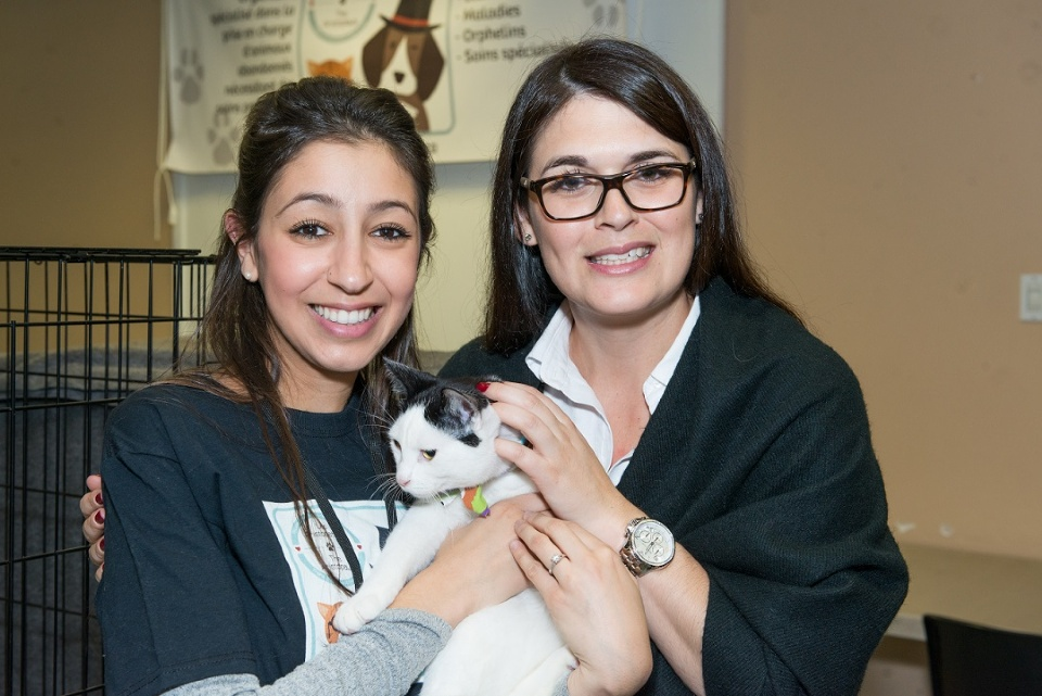 New Regulations for Pets in Laval | Laval Families Magazine | Laval's Family Life Magazine